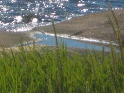 havet og det grønne
