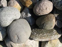 steinene