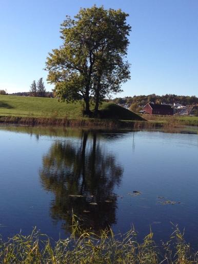 gamlebyen Fredrikstad